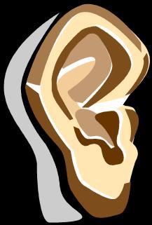Ear_2